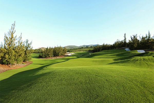 Golf at FLC Quy Nhon Golf Links (B)